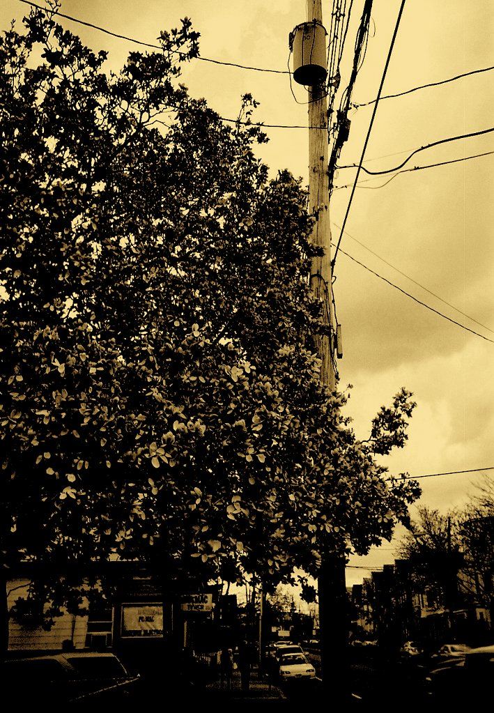73530016-Beacon-Streetgold.jpg